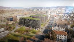 Wettbewerb-Hofackerstrasse-Muttenz-Blaser-Architekten-morph-3D-Visualisierung-Vogelperspektive