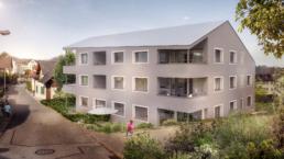 Feusi-Architektur-MFH-Seon-morph-3d-visualisierung-render